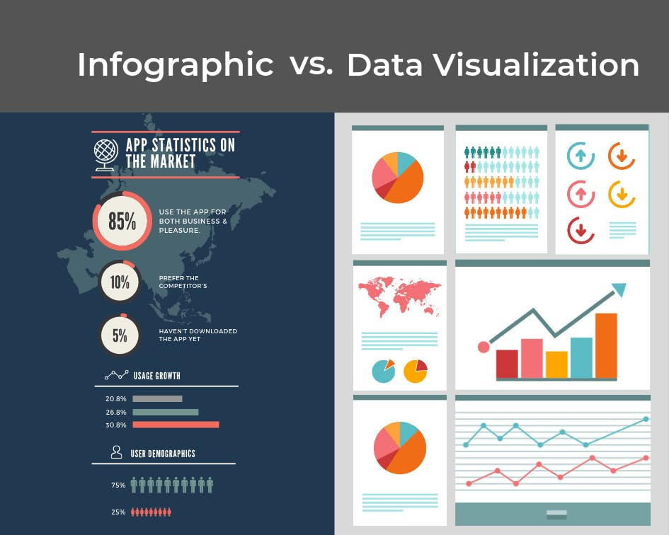 infographic vs. data visualization